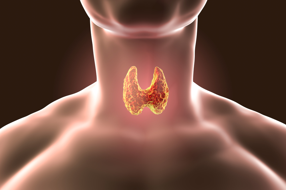 Is Fasting Bad For Thyroid Health